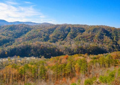 402 Red Fox Trail Marshall NC-small-004-045-image4-666x444-72dpi