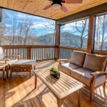 North Asheville Timberpeg screen porch